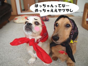 022_convert_201308071453221