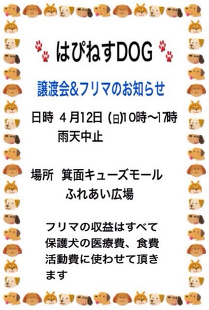 O04320640132615248541