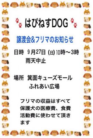 Img_46201405x6001