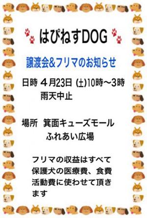 Img_83031405x6001