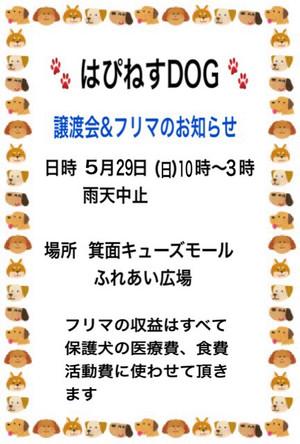 Img_89351