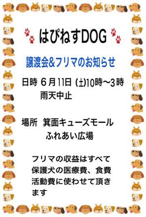 Img_893621
