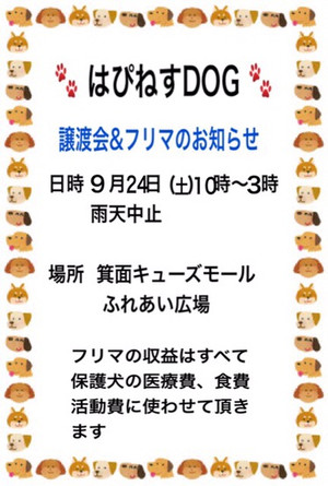 Img_06531