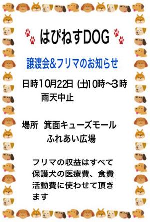 Img_065411_3