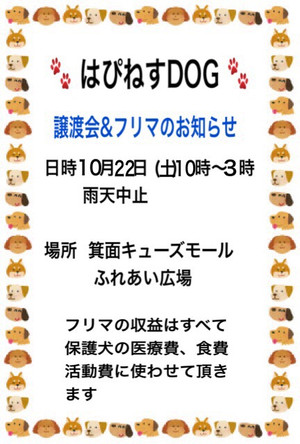 Img_065411