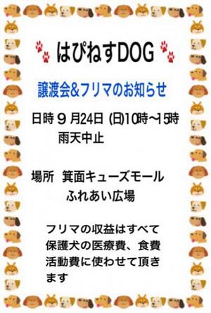Img_7650405x6001
